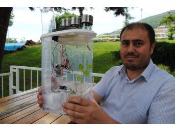 Bitkiler İçin Güneş Enerjisiyle Havadan Su Üreten 'akıllı Bakıcı'