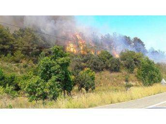 8 Hektarlık Orman Arazisi Zarar Gördü