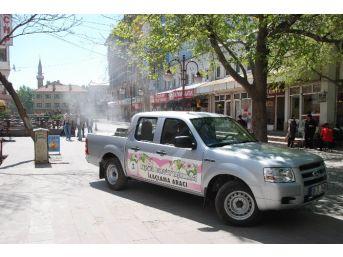 Akşehir'de Haşereyle Mücadele Çalışmaları Sürüyor