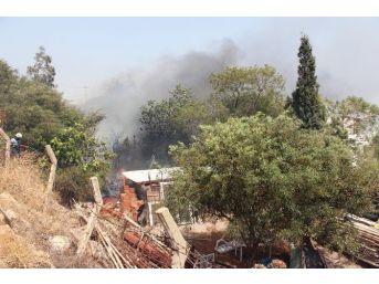Turizm Bölgesi Bodrum'da Yangın Devam Ediyor