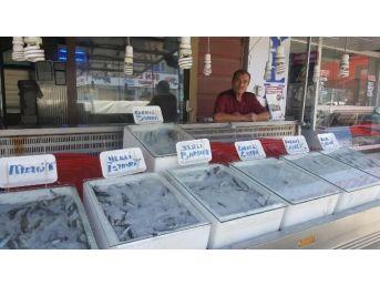 Alaplı'da Ramazan Ayında Balık Tüketimi Azaldı