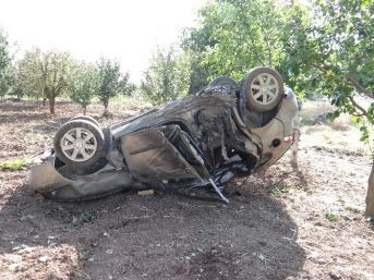Otomobil Ağaca Çarpıp Takla Attı: 2 Yaralı