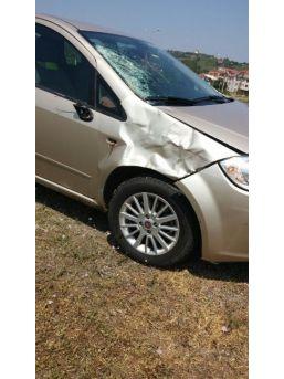 Otomobil Çarptığı Yaya Hayatını Kaybetti