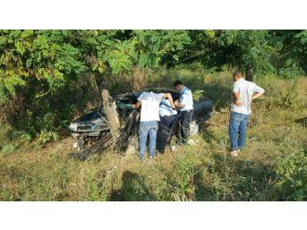 Ağaca Çarpan Otomobildeki Zabıta Memuru Yaralandı