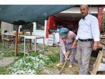 İzmir'de Dolu Tarım Ürünlerini Vurdu