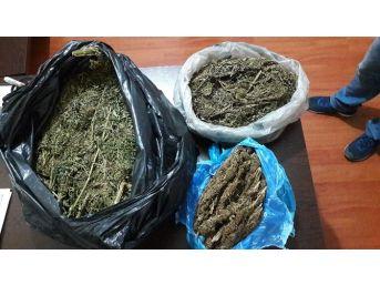 Niğde'de Uyuşturucu Tacirlerine Darbe: 4 Tutuklama