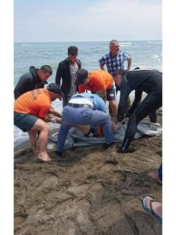 Karadeniz'de Kaybolan Gencin Cesedi Kıyıya Vurdu