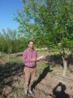 Çemişgezek'te Organik Dut Üretimi Yaygınlaşıyor