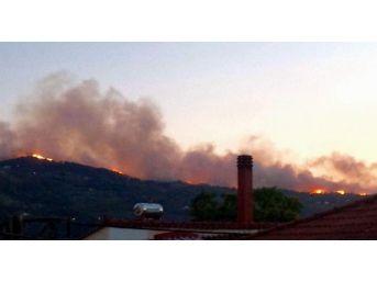 Samos Adası'ndan Yükselen Alevler Kuşadası'ndan Görüldü