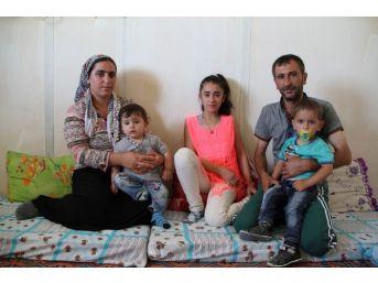 (özel Haber) Terör Mağduru Aile Yardım Bekliyor