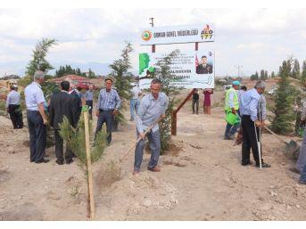 Niğde'de Şehit Astsubay Ömer Halisdemir Adına Hatıra Ormanı Oluşturuldu