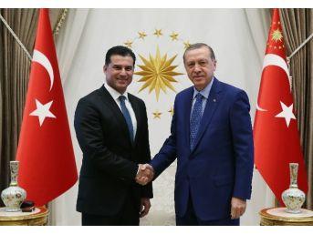 Cumhurbaşkanı Erdoğan Kktc Başbakanı Özgürgün'ü Kabul Etti