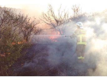 Körfez İlçelerinde Korkutan Yangınlar