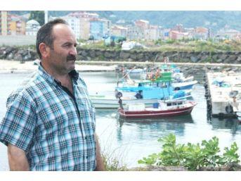 Mezgit Avının Yapılamaması Balıkçıları Yeni Av Sezonu Öncesi Korkutuyor