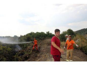 Tavşanlı'da Orman Yangını Kontrol Altına Alındı
