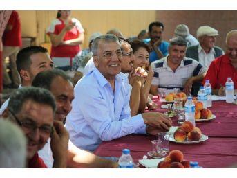 """Başkan Tarhan: """"tepeköy Şeftalisini Markalaştıracağız"""""""