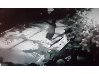 (özel Haber) Güvenlik Kameraları Maganda Dehşetini Saniye Saniye Kaydetti