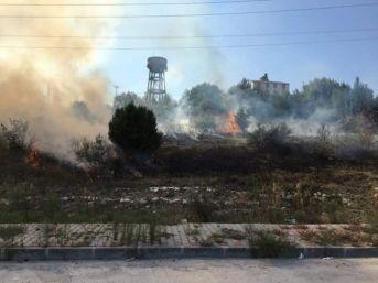 Alaplı'da Anız Yangınını İtfaiye Söndürdü