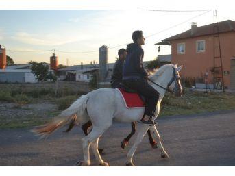 Bigadiç'te Rahvan Atlar Yarışlara Hazırlanıyor