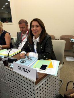 Milletvekili Günay, Paris'de Suriyeli Mültecilere Yapılan Yardımları Anlattı
