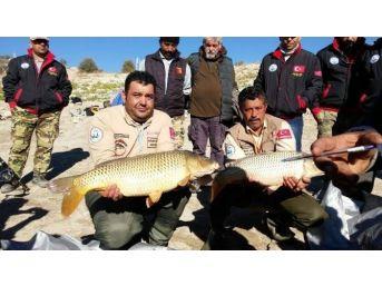 Baraj Gölünde Balık Yakalama Yarışması Heyecanı