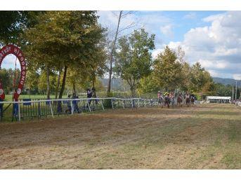 Sapanca Mahalli At Yarışları Büyük İlgi Gördü