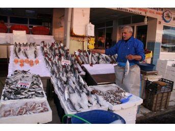 Yozgat'ta Balık Tezgahlarında Çeşitlilik Arttı