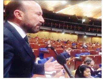 Başkan Doğan'dan Avrupa Konsey'inde Önemli Mesajlar Verdi