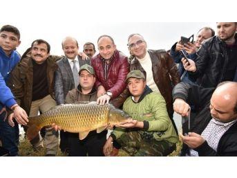 Kartepe'de Sazan Kupası Başlıyor