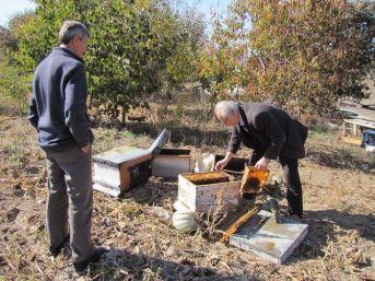 Hisarcık'ta 30 Arı Kovanı Yakıldı