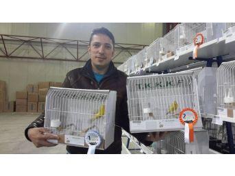 Zonguldak Kuş Üreticileri Derneği, Kocaeli'den Madalya İle Döndü