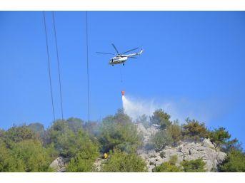 Adana'daki Orman Yangını Söndürüldü