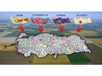 Türkiye Milli Tarım Destekleme Modeli Kapsamında Kırklareli'nde 54 Ürüne Destek