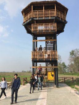 Mühendis Adayları Kızılırmak Deltası Kuş Cenneti'ni Gezdi