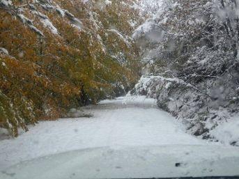 Azdavay'da Kar Yağışı Hayatı Olumsuz Etkiliyor