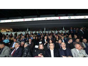 Anadolu, Arena'da Buluştu