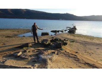 Deniz Çekildi, Antik Kyzikos Iskelesi Ortaya Çıktı