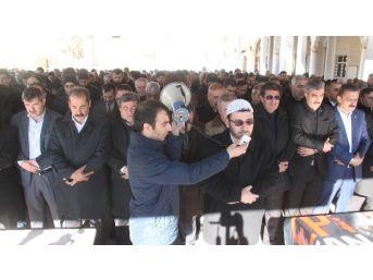 Elazığ'da Halep İçin Gıyabi Cenaze Namazı Kılındı