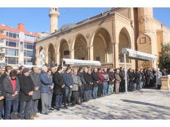 Mardin'de Halep İçin Gıyabi Cenaze Namazı Kılındı