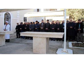 Halep'te Katledilen Müslümanlar İçin Gıyabi Cenaze Namazı
