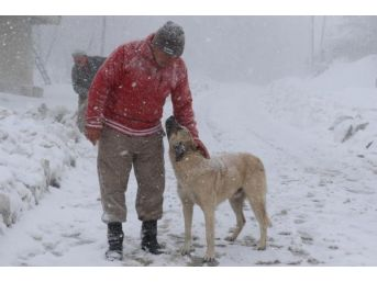 Samsun'da Etkili Kar Yağışı