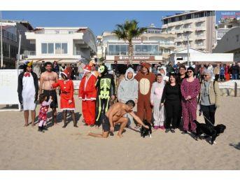 Sokak Hayvanları Yararına Denize Girdiler