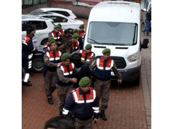 Bartın'da Büyükbaş Hayvan Hırsızlığına 5 Tutuklama