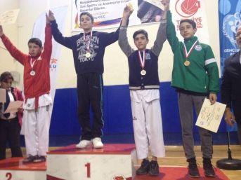 Yıldızlar Anadolu Ligine Dodurgalı Taekwondocular Damga Vurdu