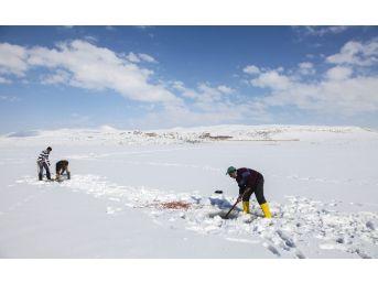 (özel Haber) Buz Kaplı Gölde 'eskimo' Usulü Balık Avı