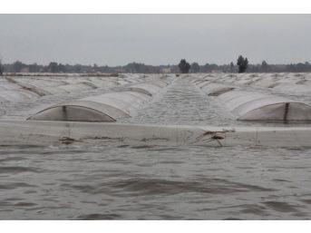 Selin Vurduğu Mersin'de Yaralar Sarılmayı Bekliyor