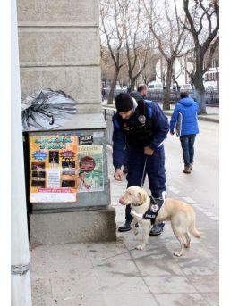 Kastamonu'da 100 Polisle Asayiş Uygulaması
