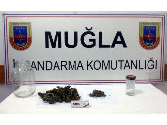 Jandarma Uyuşturucuyla Mücadeleyi Sürdürüyor