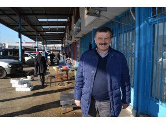 Gürcü Hamsisi De Çare Olmadı