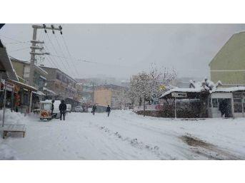 Kulp'ta Kar Yağışı Hayatı Durma Noktasına Getirdi